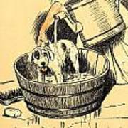 Washed By Mary - A Dog Day Collection 4 Of 27 Art Print
