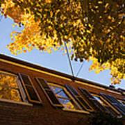 Washington D C Facades - Reflecting On Autumn In Georgetown  Art Print