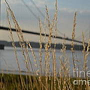 Wasting Time By The Humber Art Print