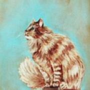 Watch Cat Art Print