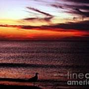 Watching The Sunset Art Print by Doris Wood
