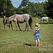 Watching The Wild Horses Art Print
