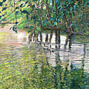 Water And Woodland Art Print by Nick Payne