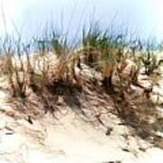 Water Color Sketch  Beach Dune Art Print