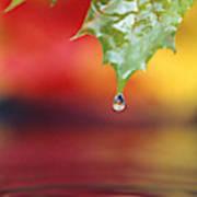 Water Dripping Art Print