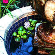 Water Fountain Art Print