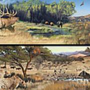Water Hole Safari Art Print