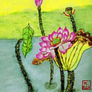 Water Lilies  Chinese Watercolor Art Art Print