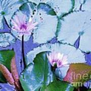 Water Lily II Art Print by Ann Johndro-Collins