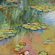 Water Lily Art Print by Michael Creese