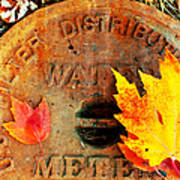 Water Meter Cover With Autumn Leaves Abstract Art Print