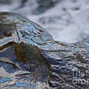 Water Mountain 2 By Jrr Art Print