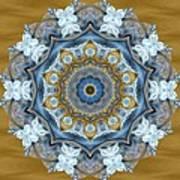 Water Patterns Kaleidoscope Art Print