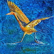 Water Run Art Print