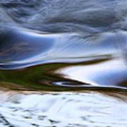 Water Swallow Art Print