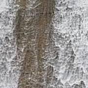 Water Vail Art Print
