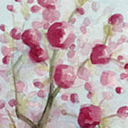 Watercolor Painting Of Pink Cherry Blossoms Art Print