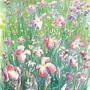 Watercolour Of Pink Iris's In A Green Field Art Print