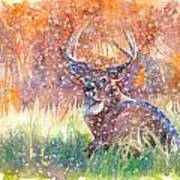 Watercolour Painting Of A Stag In The Snow Art Print