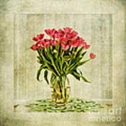 Watercolour Tulips Print by John Edwards