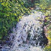 Waterfall At Chicago Botanic Gardens Art Print