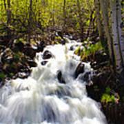 Waterfall Through The Aspens Art Print