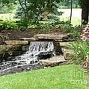 Waterfall With Coneflowers Art Print