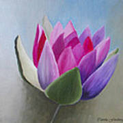 Waterlily Art Print by Carola Ann-Margret Forsberg