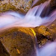 Waters Of Zion Art Print