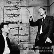 Watson And Crick With Dna Model Art Print