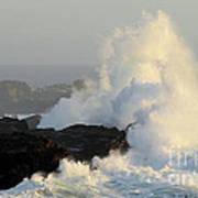 Waves At Salt Point Art Print