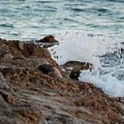 Waves Hitting The Rocks Art Print