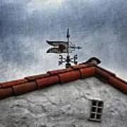 Weathered Weathervane Art Print by Carol Leigh