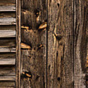 Weathered Wooden Abstracts - 3 Art Print