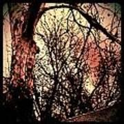 Web Of Tree Mauve Art Print