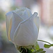Wedding Flower Art Print