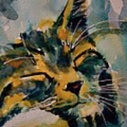 Weeeeeee Sleepee Art Print by Paul Lovering