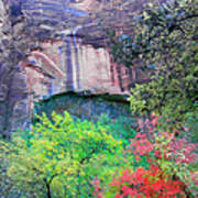 Weeping Rock At Zion National Park Art Print
