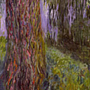 Weeping Willow And The Waterlily Pond Art Print