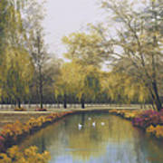 Weeping Willow Art Print by Diane Romanello