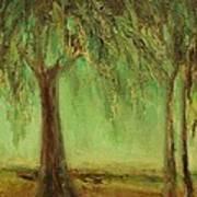 Weeping Willow Art Print