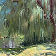 Weeping Willow Tree Art Print
