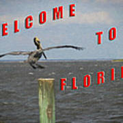 Welcome To Florida Art Print