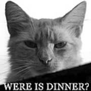 Were Is Dinner Art Print