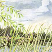 West Bay Napanee River Art Print