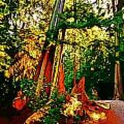 West Coast Rainforest Art Print
