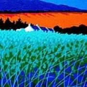 West Cork Landscape Art Print by John  Nolan