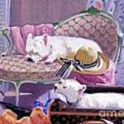 Westies Home Art Print