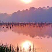 Wetlands Sunrise Art Print by JC Findley