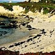 Whale Rock Beach Art Print